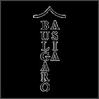 Българо.Азия Logo